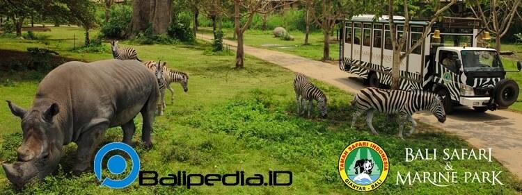 Harga Tiket Masuk Bali Safari And Marine Park