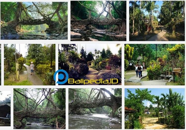 Desa Mawlynnong - Desa Paling Bersih di Dunia