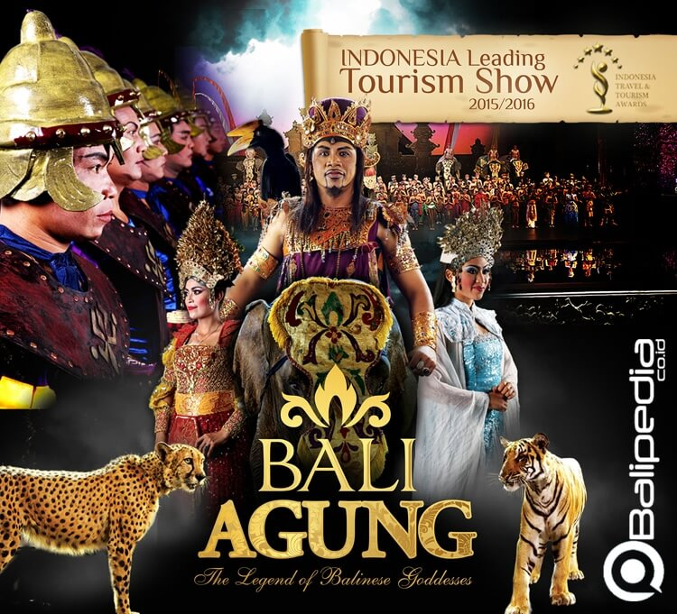 Jadwal Atraksi Bali Safari