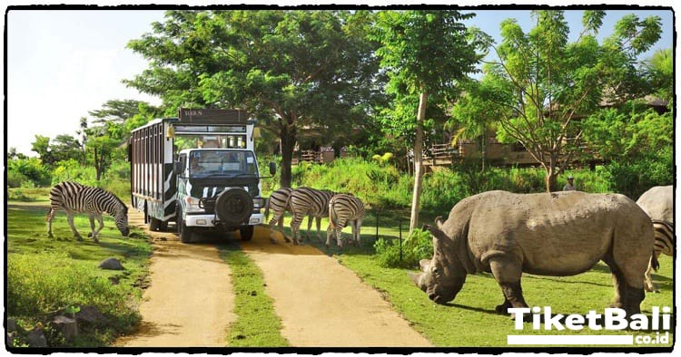 Safari Journey trip di Bali Safari