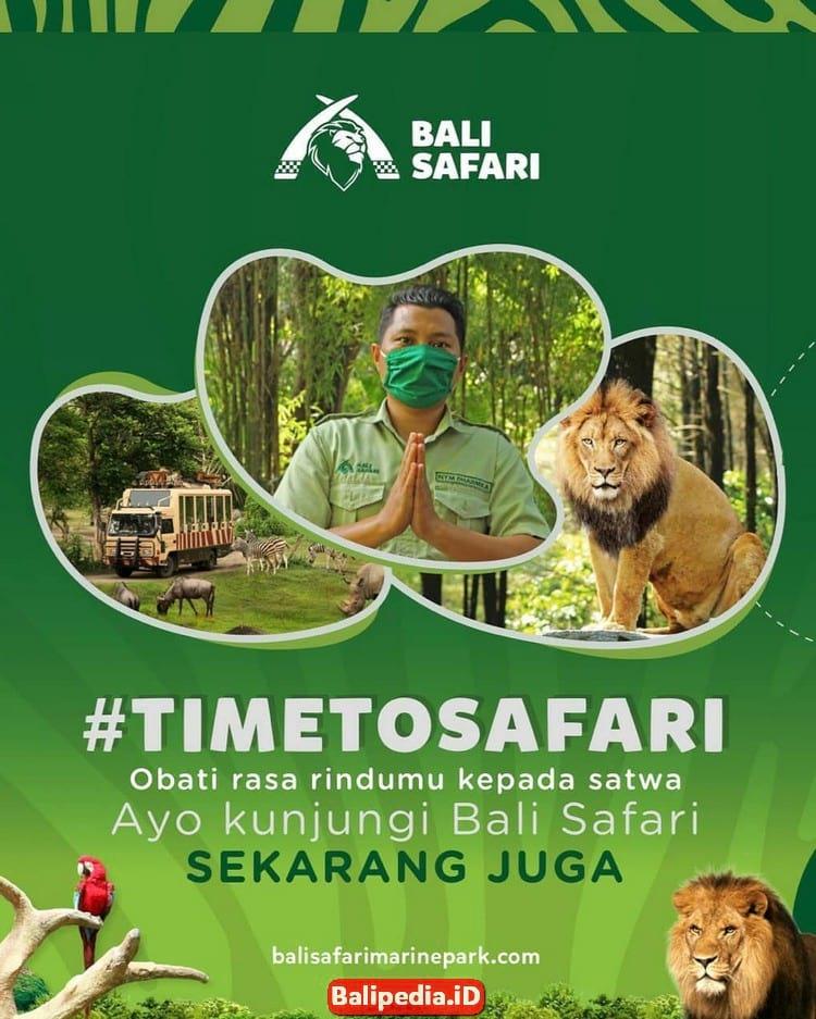 New Normal Bali Safari Park